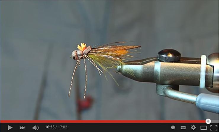 Ribnik Stonefly