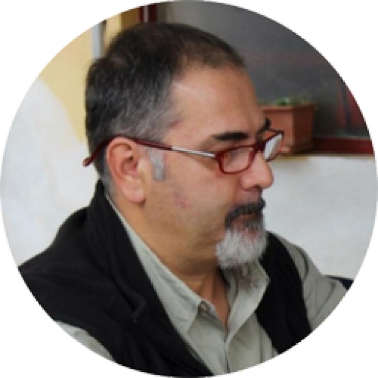 Massimo Ginanneschi